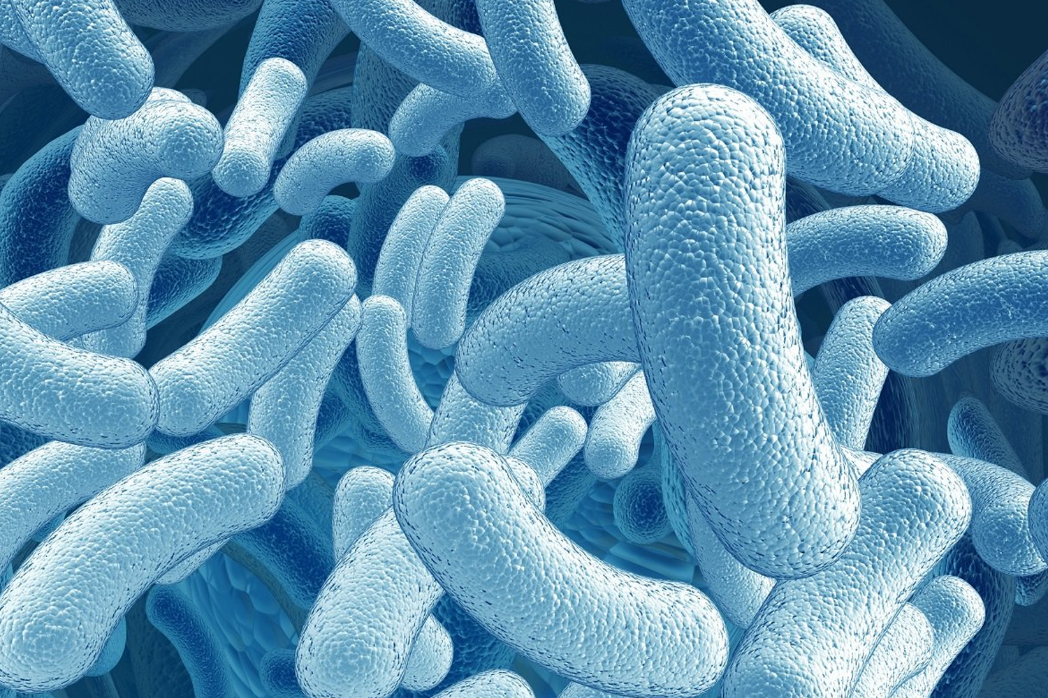 probiotics non pathogenic microorganisms biology essay Microbiology is the study of microorganisms (molecular biology) microorganisms proving that specific diseases were caused by specific pathogenic microorganisms.